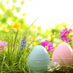 Easter message from Team Aikkiya