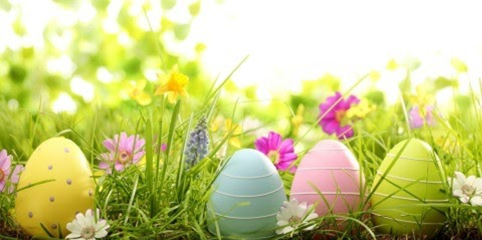 You are currently viewing Easter message from Team Aikkiya